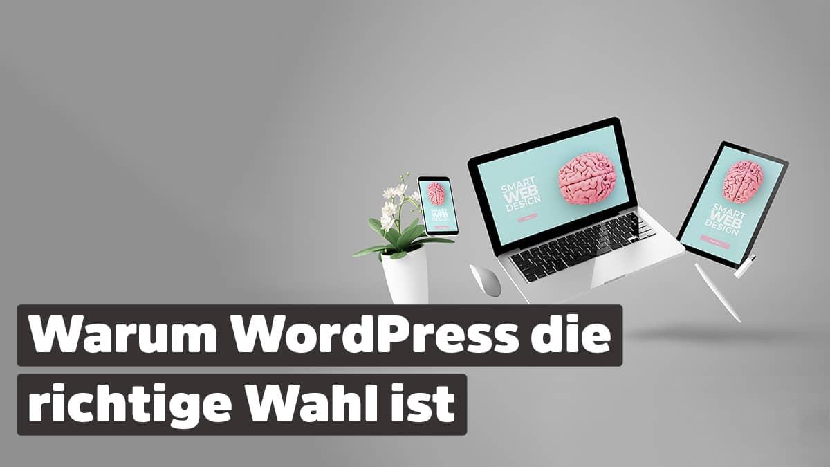 Warum WordPress