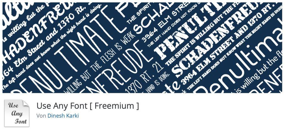 Use Any Font Plugin für WordPress Fonts